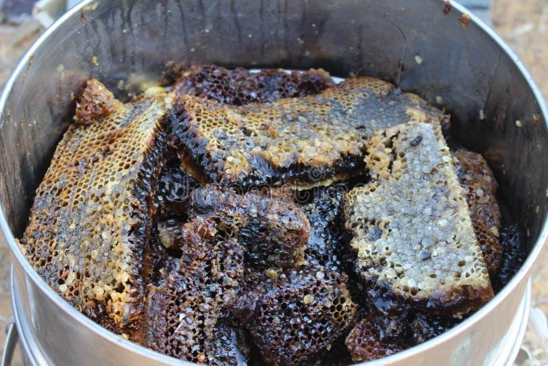 Miel local à vendre dans la fève de chapeau, Tunisie images stock