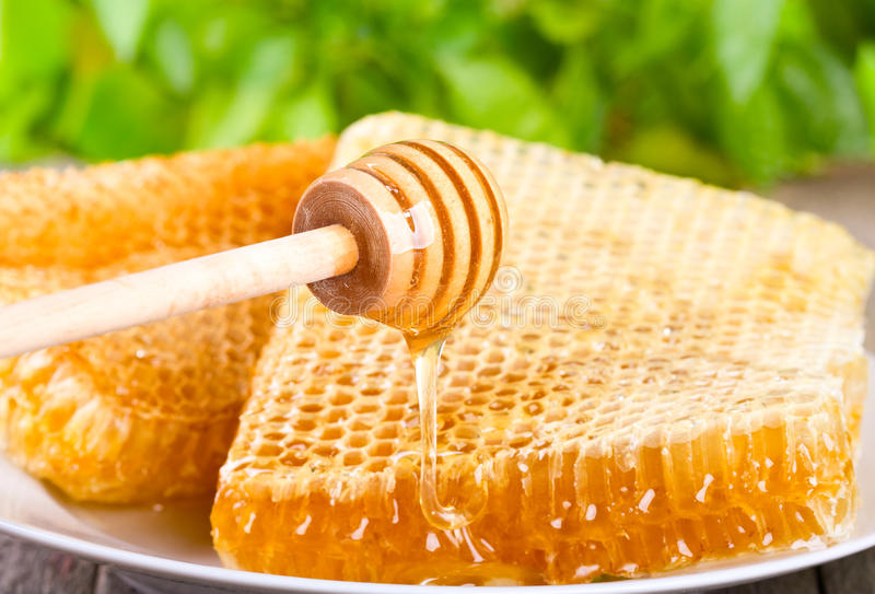 Miel pleuvant à torrents image libre de droits