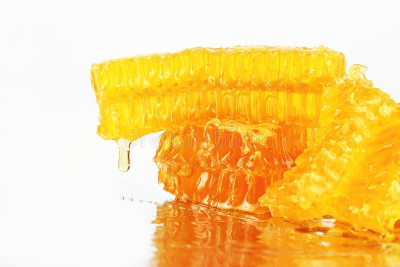 Miel que fluye de los panales en un fondo ligero imagen de archivo libre de regalías