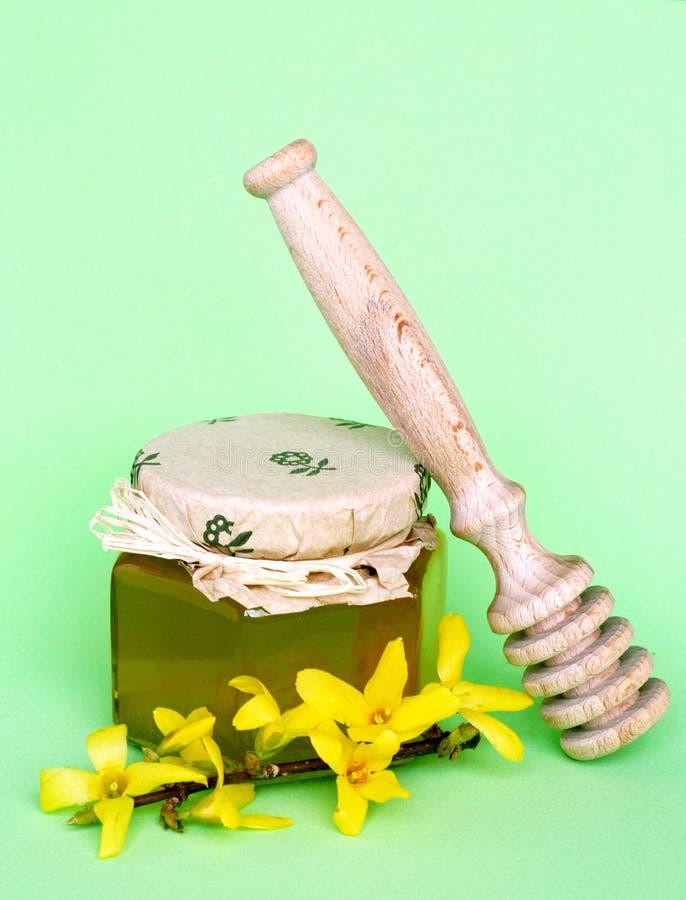 Miel y flor fotos de archivo libres de regalías