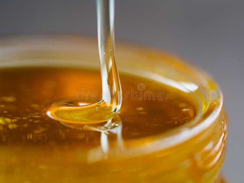 Miele che cade nella fine di estremo del barattolo su fotografia stock libera da diritti