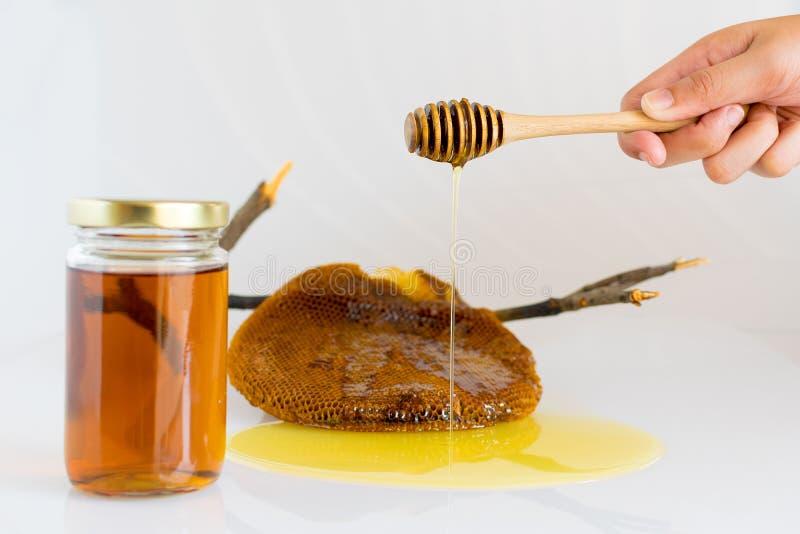 Miele con il favo immagini stock libere da diritti
