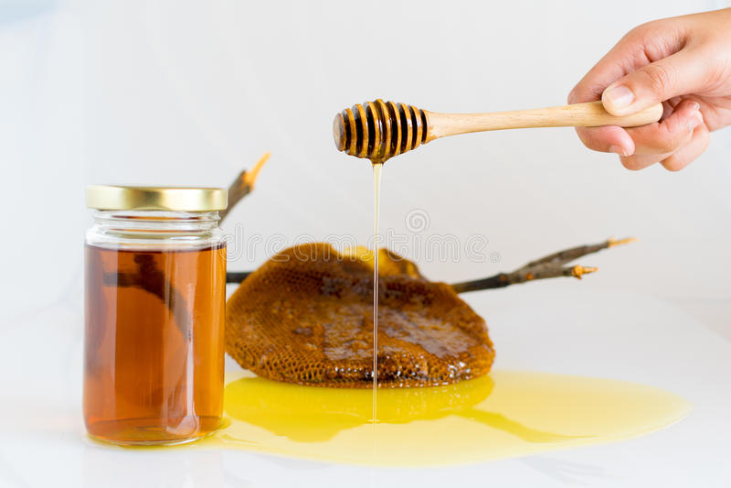 Miele con il favo immagine stock