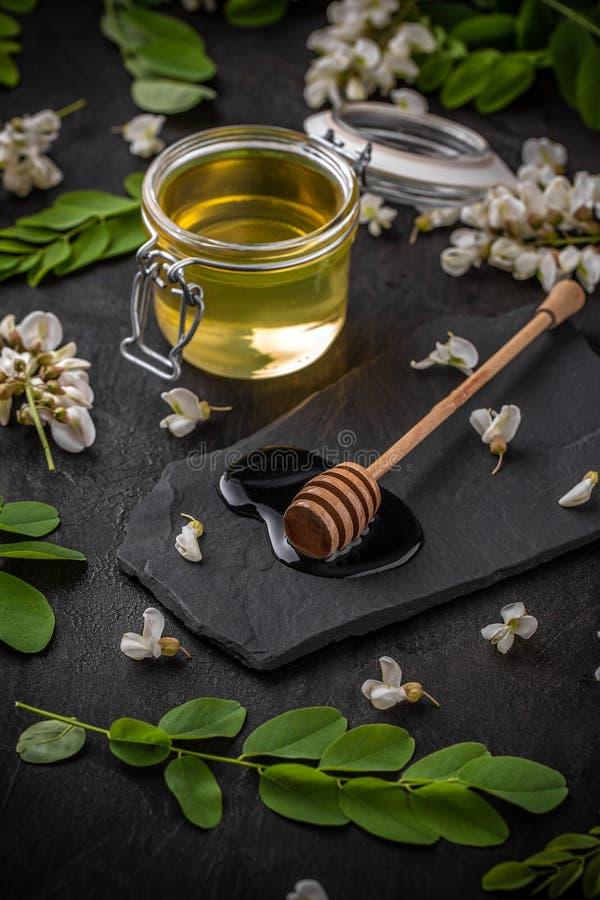 Miele dell'acacia immagini stock libere da diritti