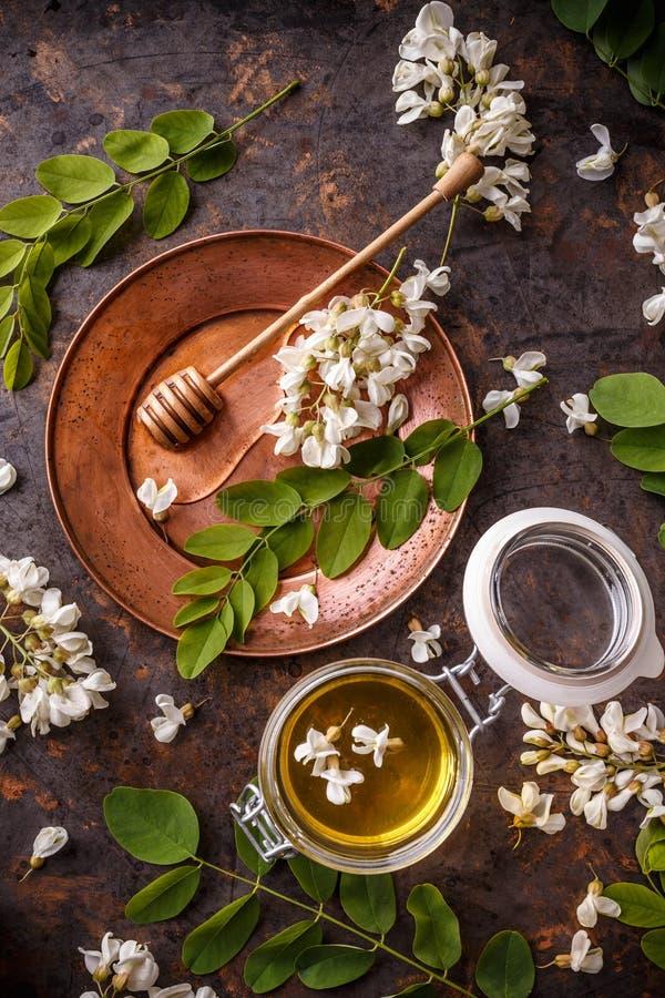 Miele dell'acacia in barattolo immagine stock