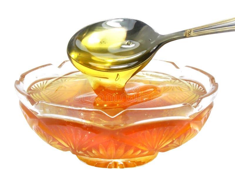 Miele dell'ape immagini stock libere da diritti