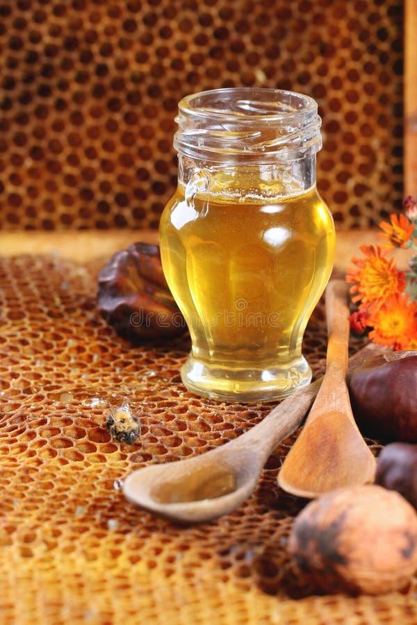 Miele e dadi immagine stock libera da diritti