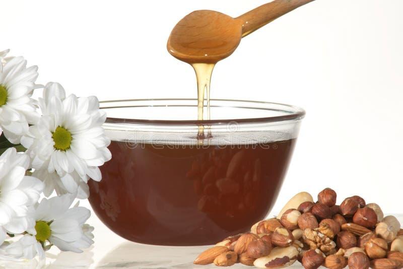 Miele e noci immagine stock