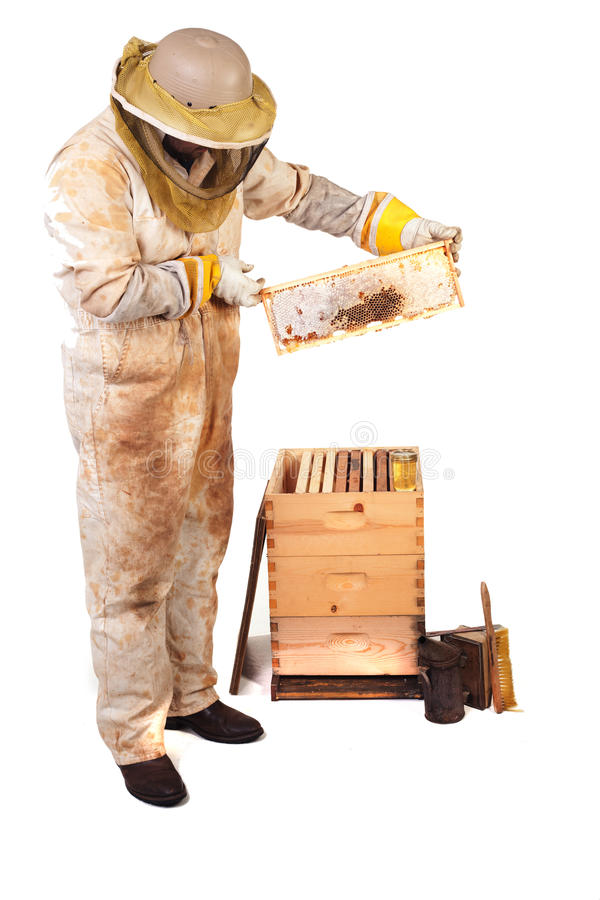 Miele e pettine immagini stock