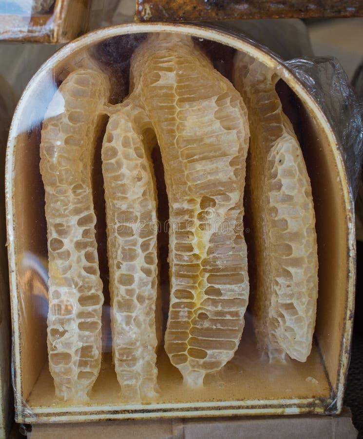 Miele fresco nel telaio sigillato del pettine immagine stock
