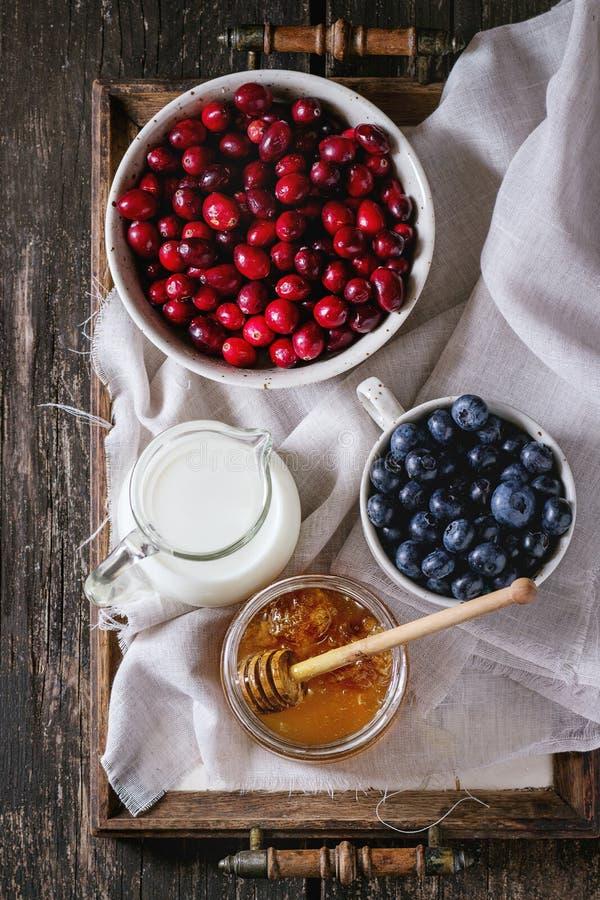 Miele, latte e bacche fotografie stock