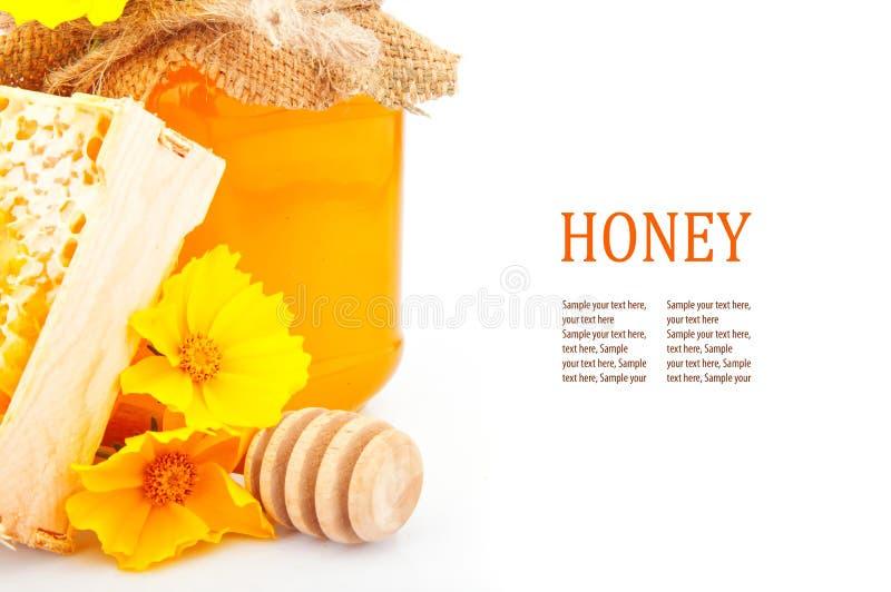 Miele & testo immagini stock libere da diritti