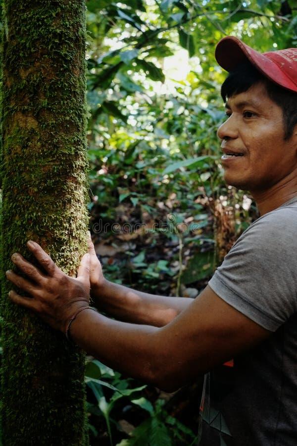 Miembro tribal del ticuna local que busca un registro para caer en el medio de la selva tropical foto de archivo