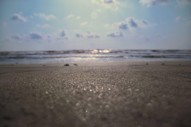 Mierda del verano imágenes de archivo libres de regalías