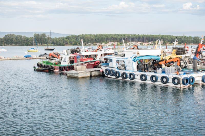 Miesmuschelaquakulturboote verankert im Hafen von O Grove lizenzfreie stockbilder