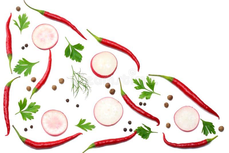Miesza gorących chili pieprze z pietruszką, pokrojoną rzodkiew i czosnek odizolowywająca na białego tła odgórnym widoku ilustracji