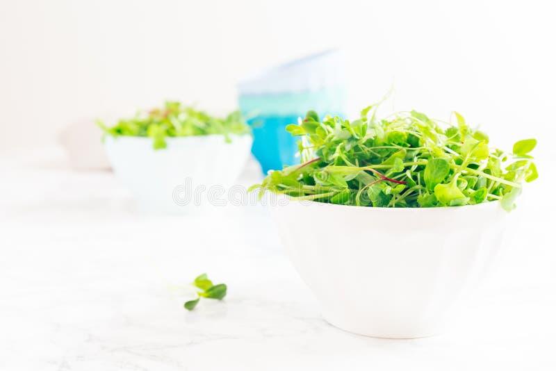 Mieszana dziecko zieleni sałatka w pucharze Superfood przekąski pojęcie zdjęcia stock