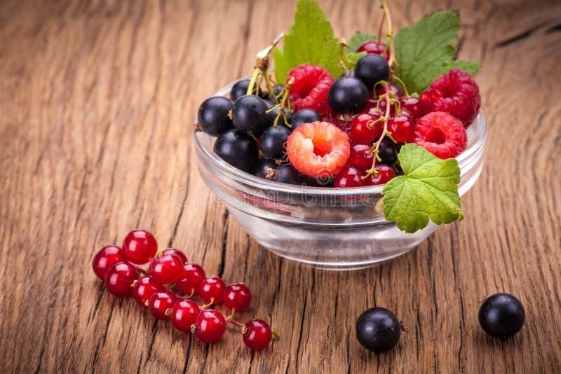 Mieszane jagody w pucharze zdjęcia royalty free