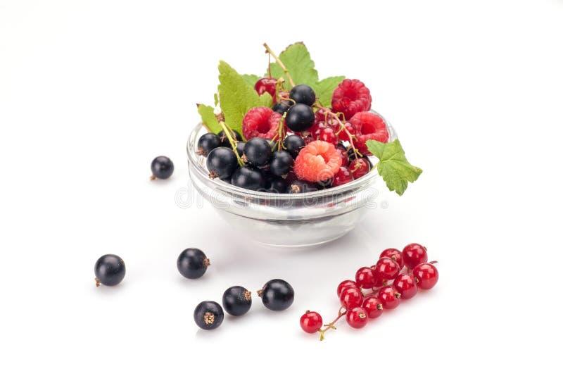Mieszane jagody w pucharze fotografia stock