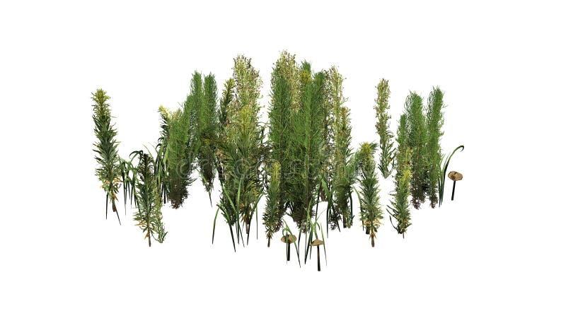 Mieszane zielenie różne zielone rośliny i brudno- pieczarki - ilustracja wektor