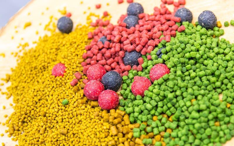 Mieszanka karpiowi popasy Proteinowe piłki i wyrko zdjęcie stock
