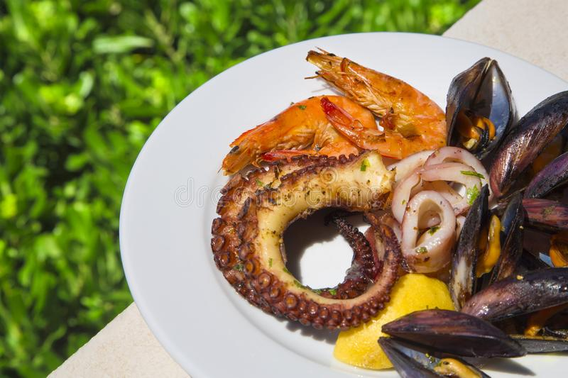 Mieszanka mussels, ośmiornica, kałamarnica i garnele, zdjęcie stock