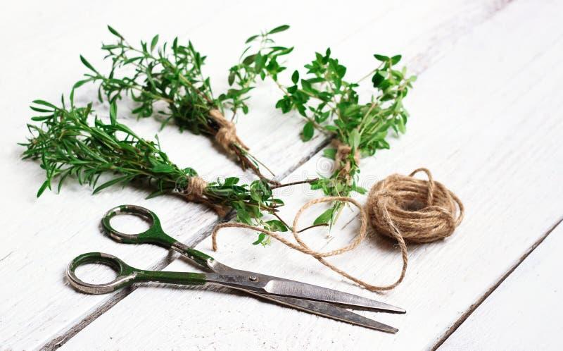 Mieszanka ziele na drewnianym stole, cząber, macierzanka obraz stock