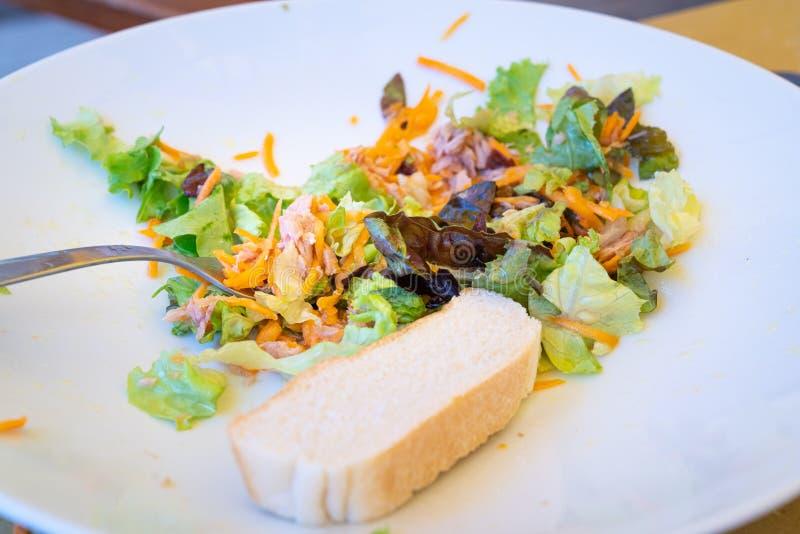 Mieszany sałatkowy talerz z tuńczykiem i chlebem obraz royalty free