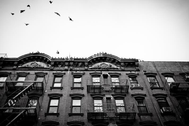 mieszkań nyc tenement zdjęcie stock