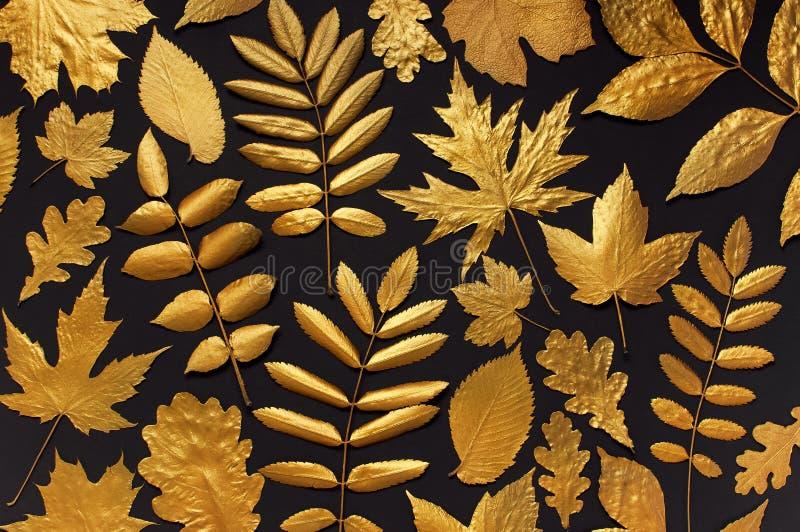 Mieszkanie jesieni nieatutowy kreatywnie skład Wzór Złoci liście na czarnego tła odgórnym widoku Spadku poj?cie jesieni? zbli?eni obraz royalty free