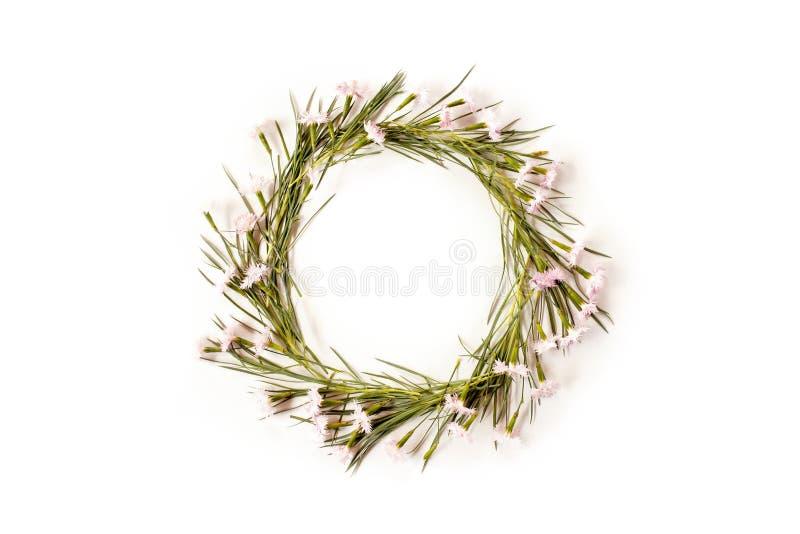 Mieszkanie kwiatów nieatutowy skład Wianek robić goździk zdjęcia royalty free