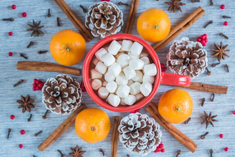 Mieszkanie nieatutowy czerwony kubek gorąca czekolada i marshmallows z pomarańczami, sosnowymi rożkami i pikantność, fotografia royalty free