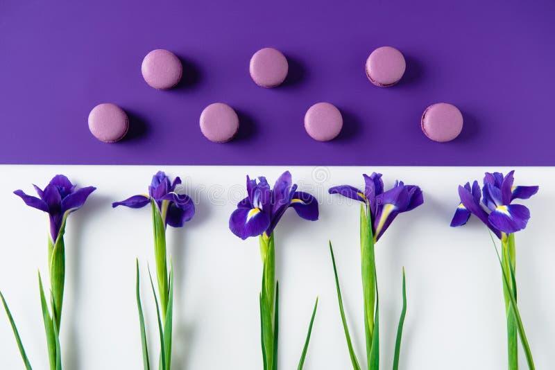 mieszkanie nieatutowy skład irys kwitnie z wyśmienicie macaron ciastkami na purpurach fotografia royalty free