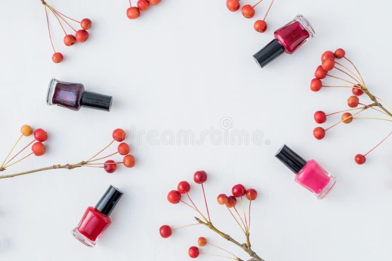 Mieszkanie nieatutowy wzór z małymi czerwonymi jabłczanymi i żeńskimi kosmetykami zdjęcia stock