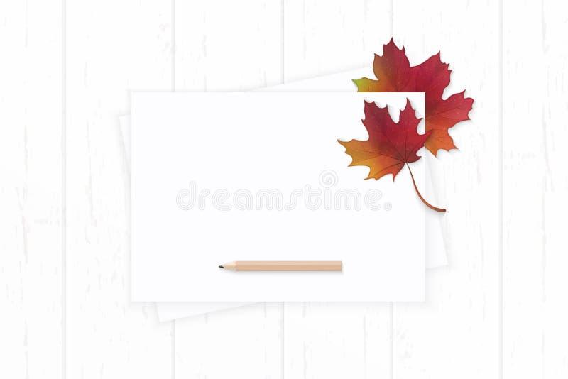 Mieszkanie odgórnego widoku składu papieru nieatutowej eleganckiej białej jesieni czerwony liść klonowy i ołówek na drewnianym tl obrazy royalty free