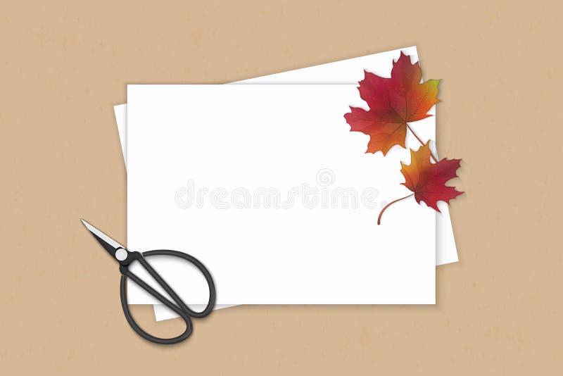 Mieszkanie odgórnego widoku składu papieru nieatutowej eleganckiej białej jesieni mpale liścia i rocznika metalu czerwoni nożyce  ilustracja wektor