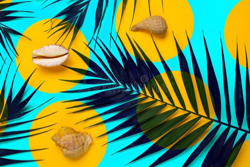 Mieszkanie podróżnika nieatutowi akcesoria z palmowym liściem, seashells Odgórnego widoku podróż lub wakacje pojęcie fotografia stock