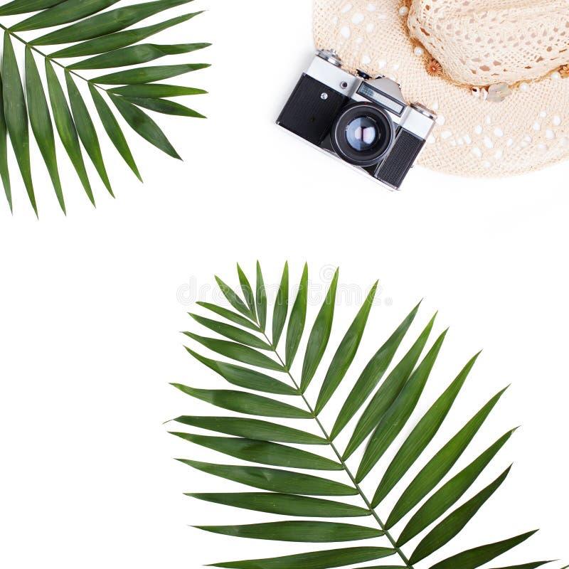 Mieszkanie podróży nieatutowy pojęcie fotografii kamera i palmowy liść - obraz stock