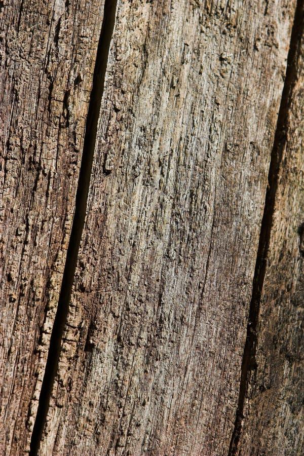 mieszkanie z drewna zdjęcia stock