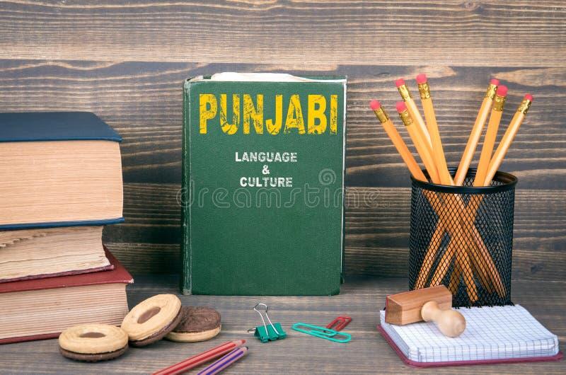 Mieszkanowie Pendżabu język i kultura zdjęcie stock
