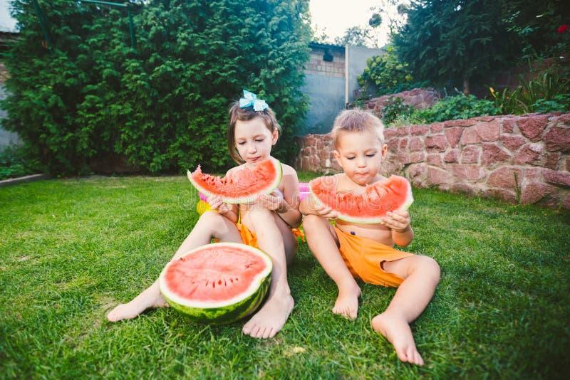?mieszny ma?e dziecko siostry i brata ?asowania arbuz na zielonej trawie blisko nadmuchiwanego basenu w jardzie w domu ch?opiec d obraz stock