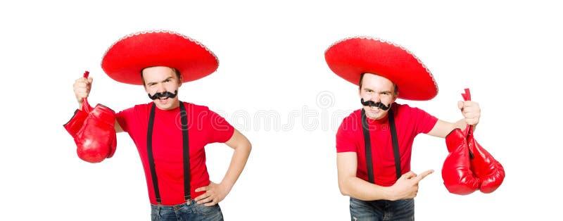 ?mieszny meksykanin z bokser r?kawiczkami odizolowywa? na bielu zdjęcie royalty free