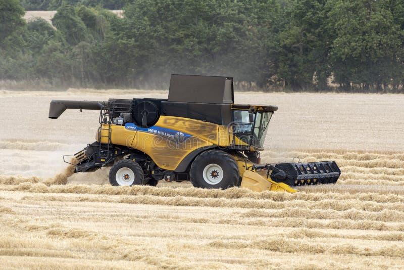 Mietitrebbiatrice che funziona raccogliendo grano, Inghilterra, Regno Unito fotografia stock libera da diritti