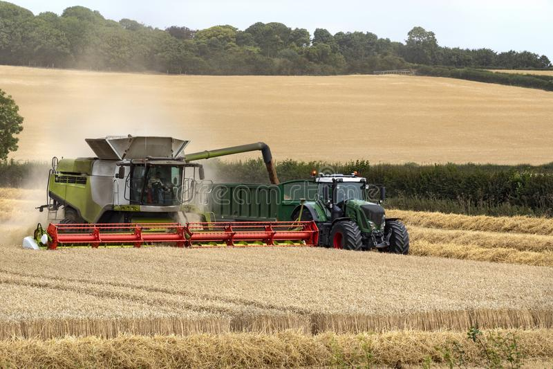 Mietitrebbiatrice che funziona in un campo di grano - Inghilterra fotografia stock libera da diritti