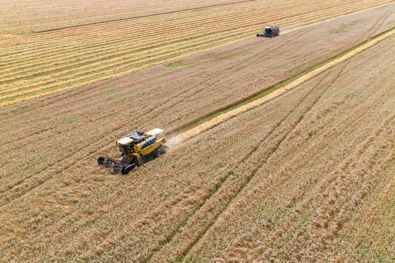 Mietitrebbiatura un campo di grano di caduta fotografie stock