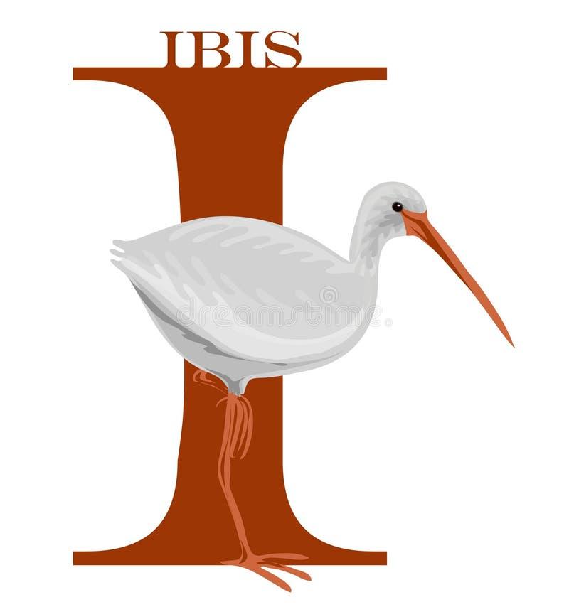 mig ibis royaltyfri illustrationer