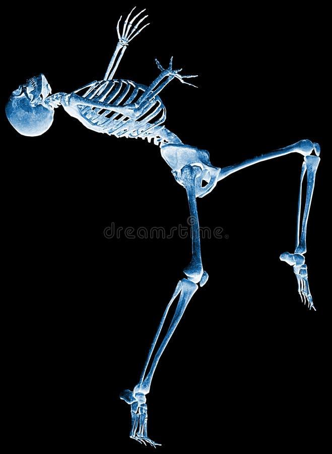 mig skelett varför röntgenstråle royaltyfri illustrationer