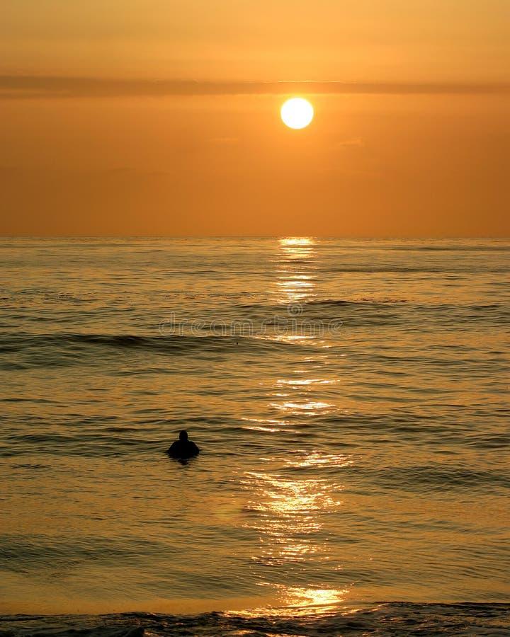 mig solnedgångsurfare royaltyfri fotografi
