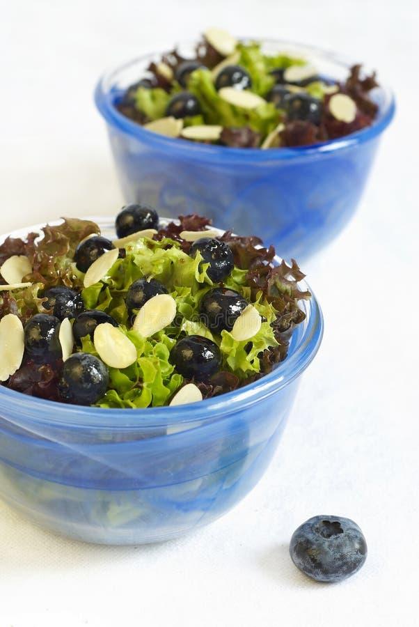 migdałów czarnej jagody sałatka zdjęcia stock