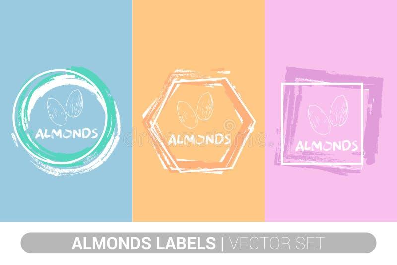 Migdał etykietki kolorowy set Surowi organicznie migdałowi dokrętki odznaki kształty Kreatywnie dokr?tek etykietki royalty ilustracja